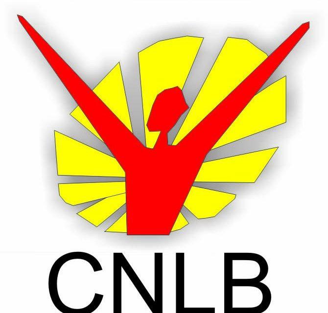 CNLB envia carta de apoio ao Papa Francisco