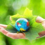 A Amazônia num contexto global