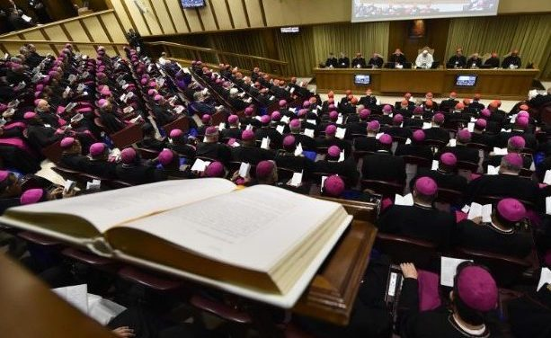 Entenda o que é e como funciona a Assembleia Geral do Sínodo dos Bispos.