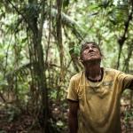 A Amazônia como lugar teológico e seus clamores