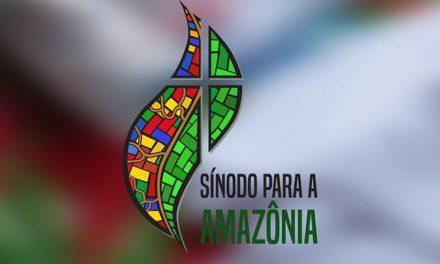 Esclarecimentos sobre o Sínodo Especial para a Amazônia