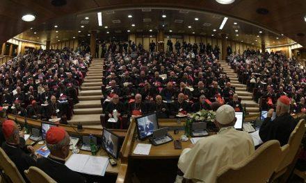 Dom Alberto Taveira e dom Erwin Kräutler são eleitos membros do Conselho Pós-Sinodal