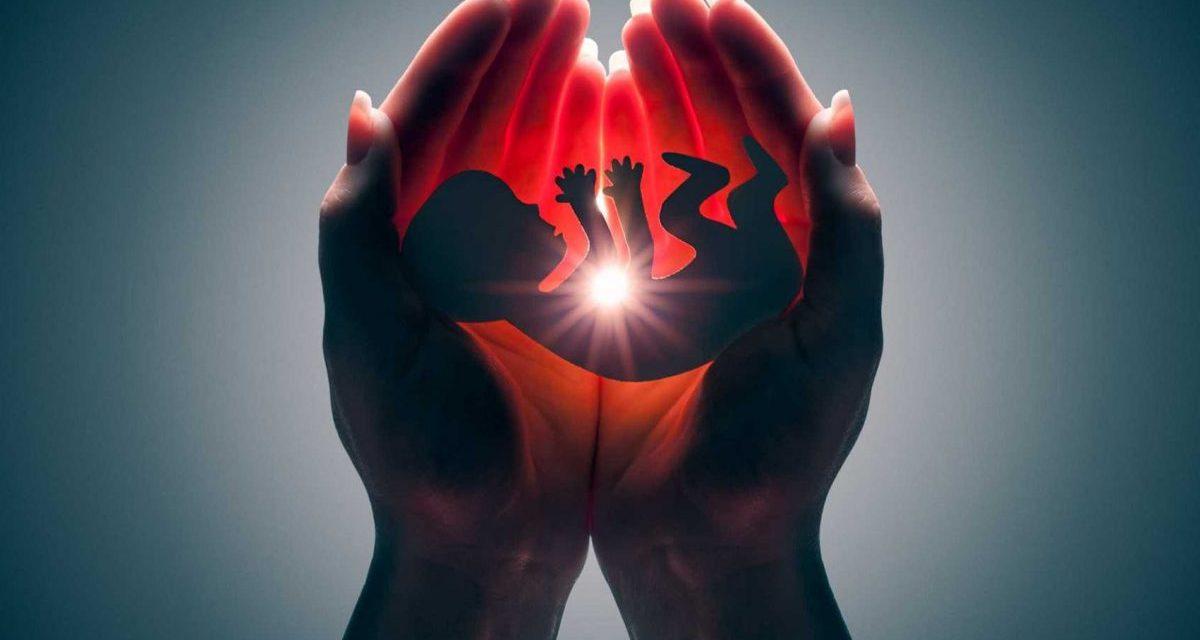 """Presidência da CNBB publica a nota """"Em defesa da vida: É tempo de cuidar"""" para pedir a todos o empenho contra o aborto"""