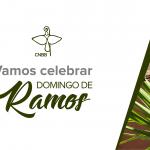 Domingo de Ramos deve ser celebrado de modo especial em tempos de coronavírus