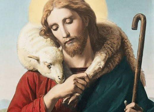 O pastorzinho veio a ser Papa