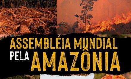 Repam-Brasil participa da Assembleia Mundial pela Amazônia realizada virtualmente