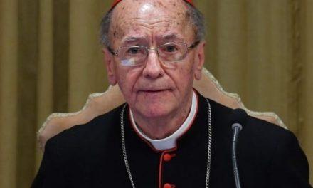 Cardeal Hummes é presidente da recém criada Conferência Eclesial da Amazônia