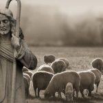 Artigo: O pastor e seu rebanho